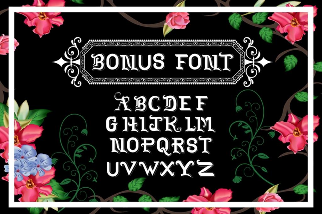 Bonust font vintage font bunlde